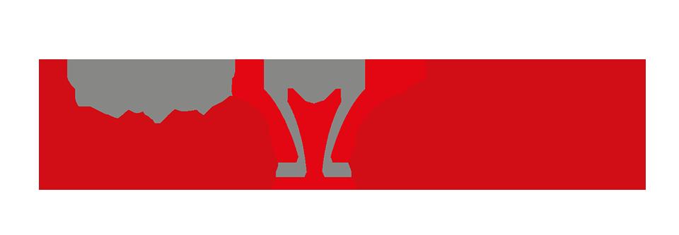 salon summit